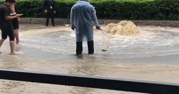 Đổ ra đường bắt cá to sau trận mưa như trút nước