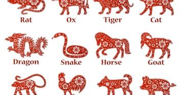 Tử vi tuần từ 16/11/2020 đến 22/11/2020 cho 12 con giáp: Bảng vàng gọi tên Tuất Dần Mùi