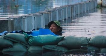 Hàng trăm người ngụp lặn trong nước đen gia cố đê vỡ do triều cường