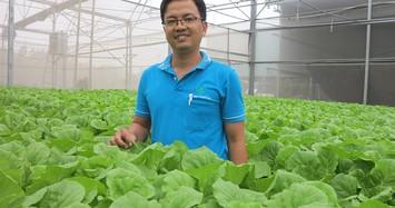Bỏ ngân hàng về trồng rau, làm vì đam mê nhưng thu đều 600 triệu/tháng
