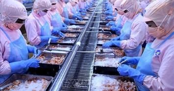 Thuỷ sản Minh Phú báo lãi ròng hợp nhất 9 tháng tăng 23% nhờ đâu?