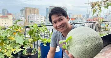 Xem vườn rau xanh mướt trên sân thượng nhà ca sĩ Trọng Tấn