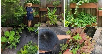 Cận cảnh khu vườn trong biệt thự trăm tỷ của diễn viên Tăng Thanh Hà