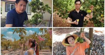 Những khu vườn tiền tỷ rộng thênh thang của sao Việt