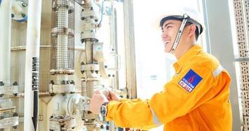 PGD lên kế hoạch lãi nhích nhẹ lên 204,5 tỷ, Tokyo Gas sẽ tăng sở hữu lên 25%