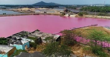 Ai là thủ phạm gây màu tím ngắt trên đầm nước ở Bà Rịa - Vũng Tàu?
