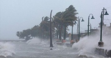 Áp thấp nhiệt đới đã mạnh thành bão, áp sát Bình Định - Ninh Thuận