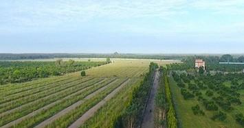 Vì sao nông trại rộng 152ha của Vinamit bị thanh tra?