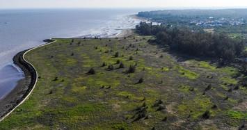 Dự kiến quy hoạch hơn 500 ha đất ở Cần Giờ làm cảng biển