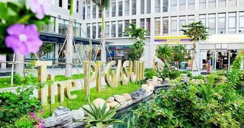 Dự án The Pegasuite: Cư dân gửi đơn khiếu nại đến Sở Tài nguyên Môi trường