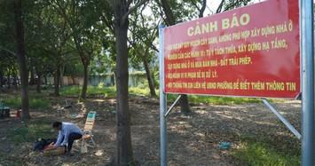 Cảnh báo tình trạng phân lô, bán nền trên đất quy hoạch đường xe lửa