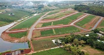 Tạm dừng thủ tục chuyển mục đích sử dụng đất tại TP Bảo Lộc