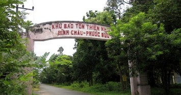 Nhiều sai phạm trong giao khoán đất rừng tại Khu Bảo tồn thiên nhiên Bình Châu - Phước Bửu