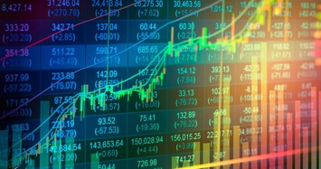 Hơn 300 mã cổ phiếu lập đỉnh lịch sử trong năm 2020