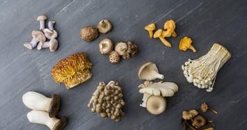 Ăn nấm mỗi ngày giảm nguy cơ mắc bệnh ung thư