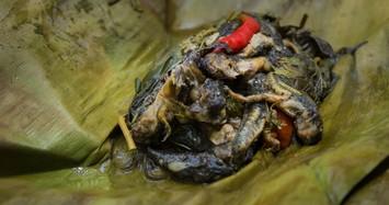 Khóc thét với đặc sản nòng nọc ếch kinh dị của Thái Lan