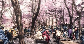 """Ảnh hiếm Nhật Bản, Trung Quốc hơn 200 năm trước được """"tô màu"""""""