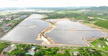 Điện Gia Lai tiếp tục lập công ty năng lượng tái tạo tại Tiền Giang