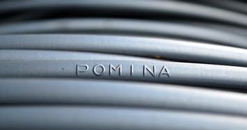 Công ty của sếp Pomina muốn bán thêm 3,7 triệu cổ phiếu POM