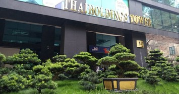 TGĐ Thaiholdings dự chi 200 tỷ mua 1 triệu cổ phiếu THD