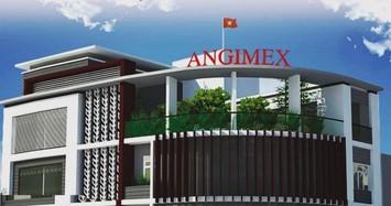 Angimex cùng nhóm Louis đầu tư dự án 1.450 tỷ ở Long Xuyên