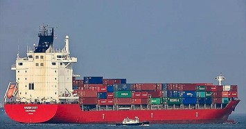 HAH muốn bán toàn bộ 1,4 triệu cổ phiếu quỹ để đóng tàu mới