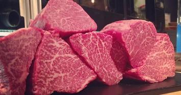 Thịt bò Kobe giá 'cắt cổ' tới 18 triệu đồng/kg vẫn đắt khách vì sao?