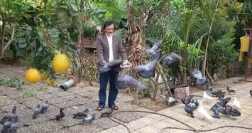 Ngôi nhà ngập tràn cây trái của nghệ sĩ Giang Còi