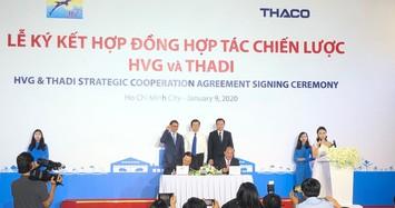 Sau cú rót vốn ngàn tỷ từ Thaco, liệu Hùng Vương có sống dậy?