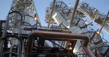 GAS và OIL hợp tác kinh doanh trong 5 năm