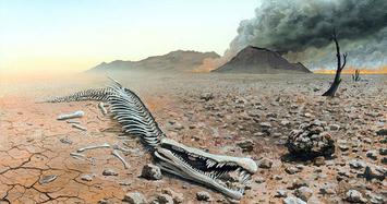 Cuộc đại tuyệt chủng gần đây đã hủy diệt 63% động vật