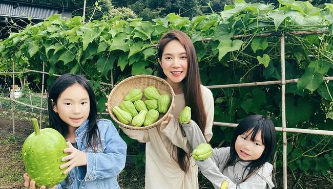 Cận cảnh nông trại rộng hàng nghìn m2 của Lý Hải - Minh Hà