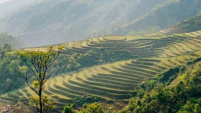 Việt Nam lung linh dưới góc nhìn của nhiếp ảnh gia quốc tế