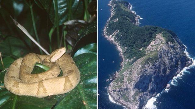 Đây là 3 cấm địa bất khả xâm phạm bí ẩn nhất thế giới