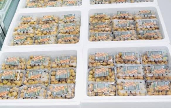 Nhãn lồng Hưng Yên có giá tới 220.000 đồng/kg ở Singapore