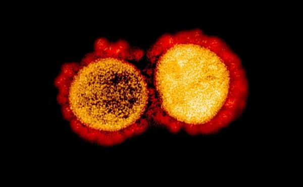 Mu - biến chủng COVID-19 khiến WHO quan ngại như nào?