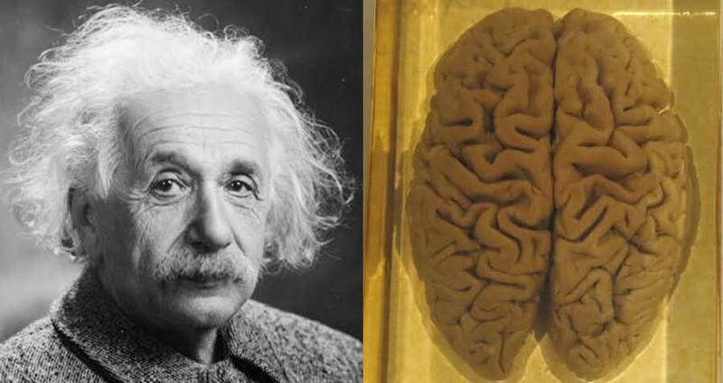 Phat hien quan trong ve nao cua thien tai Einstein-Hinh-3