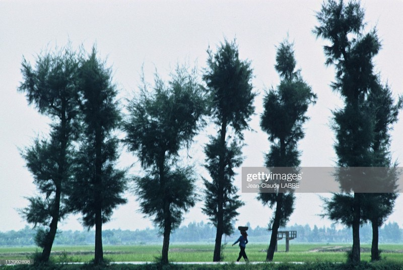 Cuoc song than thuong o nong thon Viet Nam dau thap nien 1990-Hinh-15