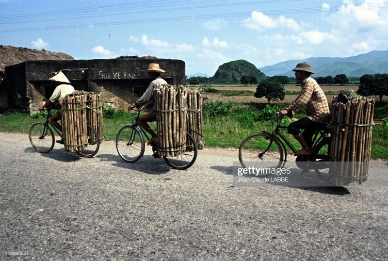 Cuoc song than thuong o nong thon Viet Nam dau thap nien 1990-Hinh-3