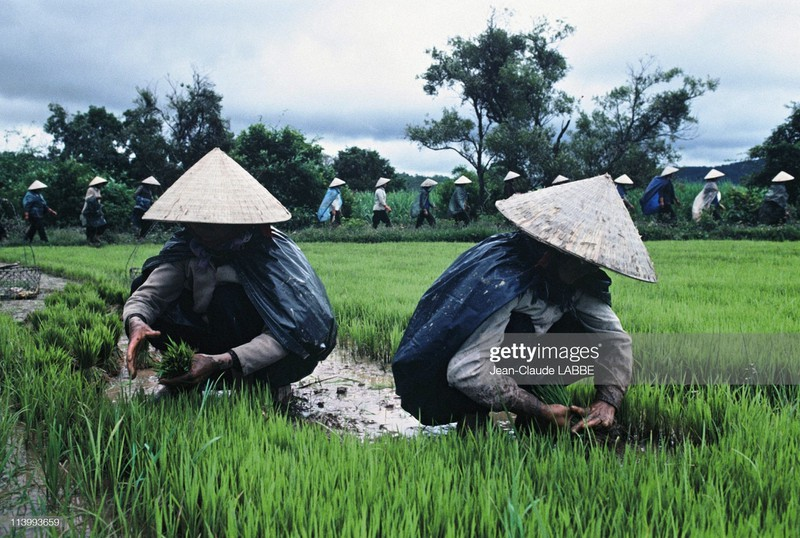 Cuoc song than thuong o nong thon Viet Nam dau thap nien 1990-Hinh-9