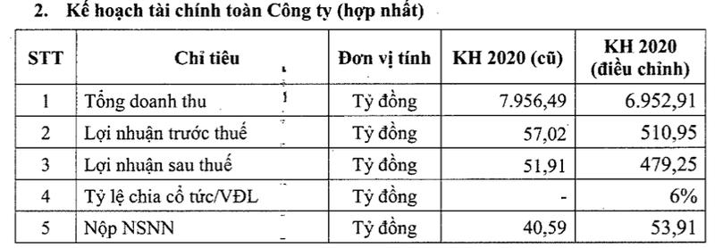 Dam Ca Mau dieu chinh tang toi 89% ke hoach loi nhuan nam 2020-Hinh-2