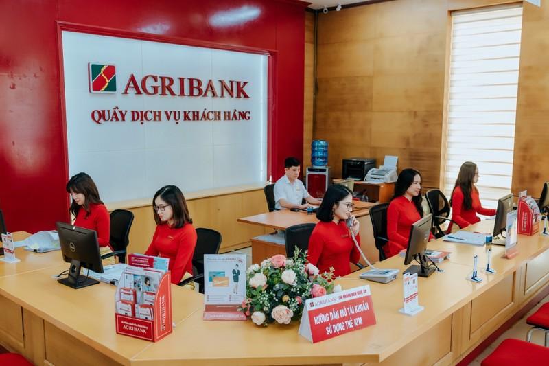 Agribank bao lai giam ve 10.354 ty, no xau tang len 21.500 ty dong-Hinh-3