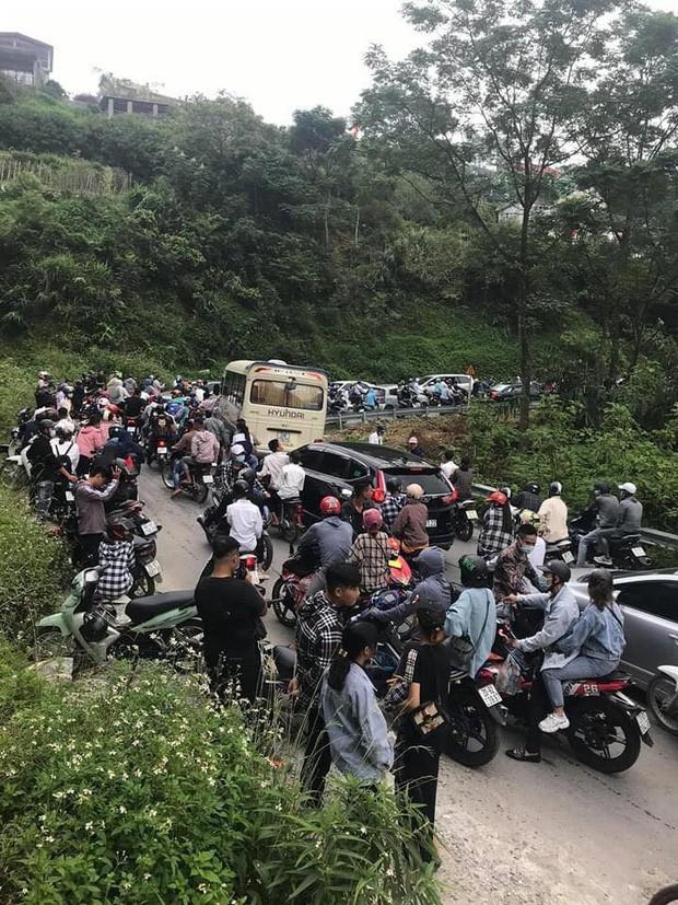 Ngot ngat Tam Dao: Xu huong be tong hoa-Hinh-2