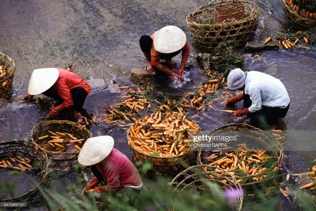 Nhung hinh anh dep ve Viet Nam dau thap nien 1990-Hinh-10