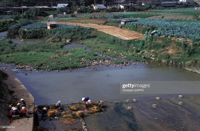 Nhung hinh anh dep ve Viet Nam dau thap nien 1990-Hinh-9