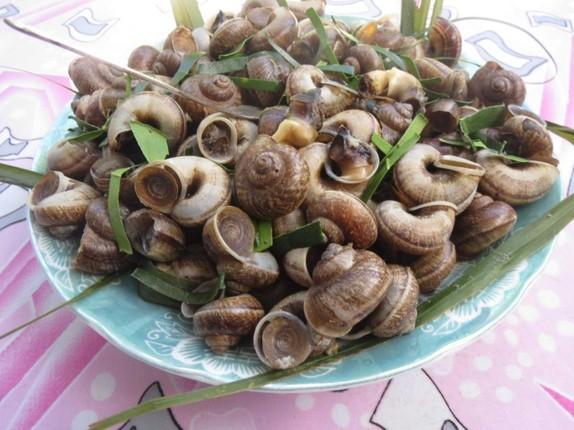 Den Ninh Binh khong the bo qua mon ngon tu oc nui da-Hinh-11