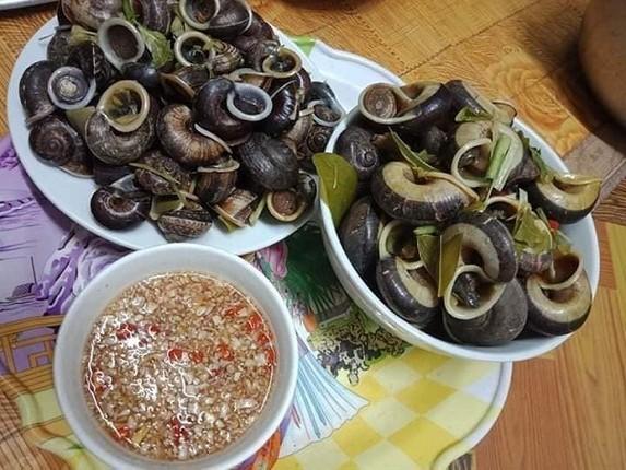 Den Ninh Binh khong the bo qua mon ngon tu oc nui da-Hinh-6