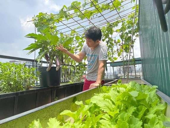 Xem vuon rau xanh muot tren san thuong nha ca si Trong Tan-Hinh-6