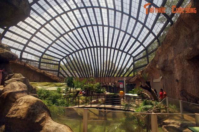 Lac loi trong trang trai buom noi tieng the gioi cua Malaysia-Hinh-2