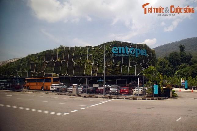 Lac loi trong trang trai buom noi tieng the gioi cua Malaysia